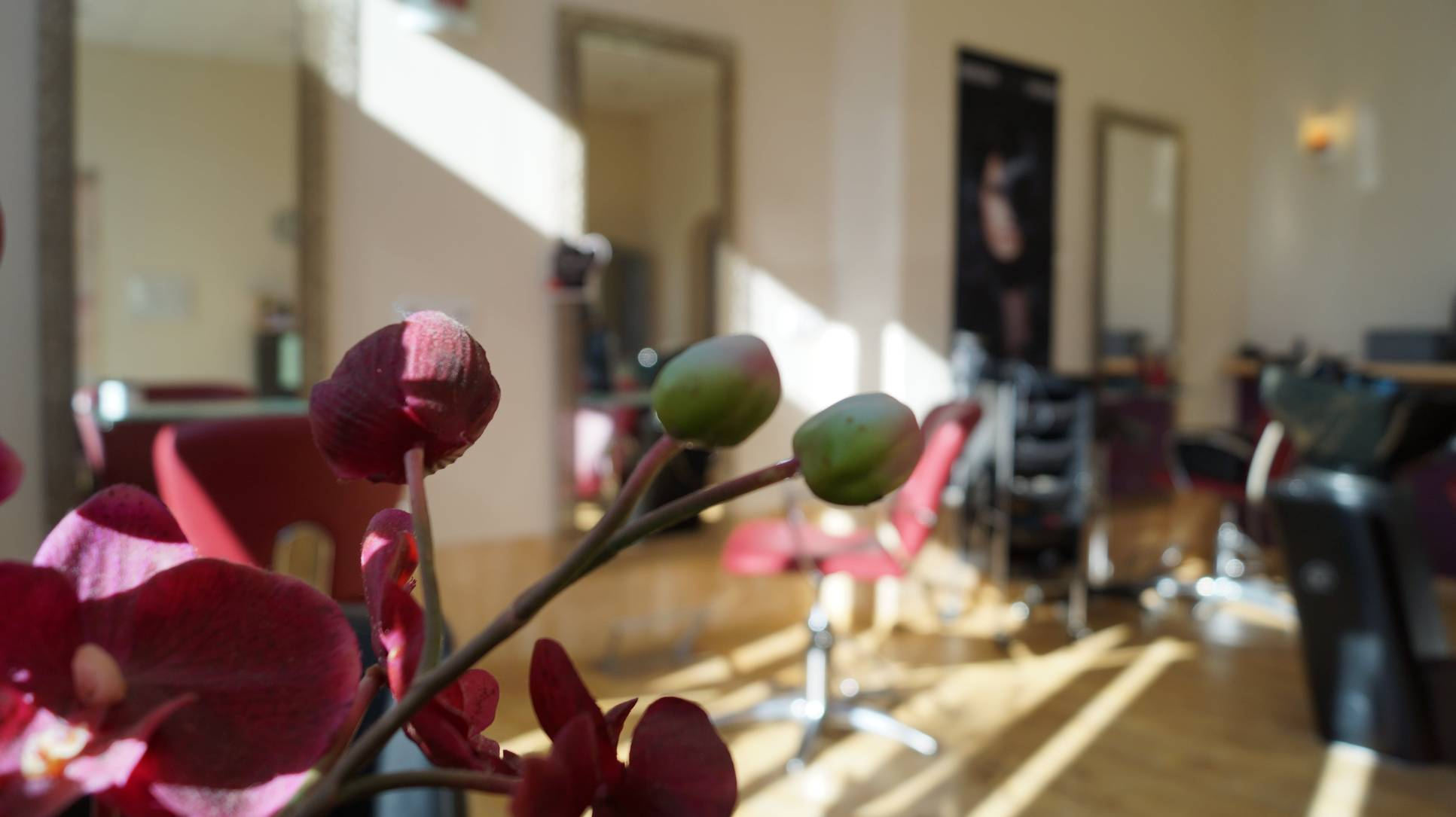 Blick in den Salon